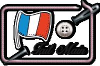 Articles français